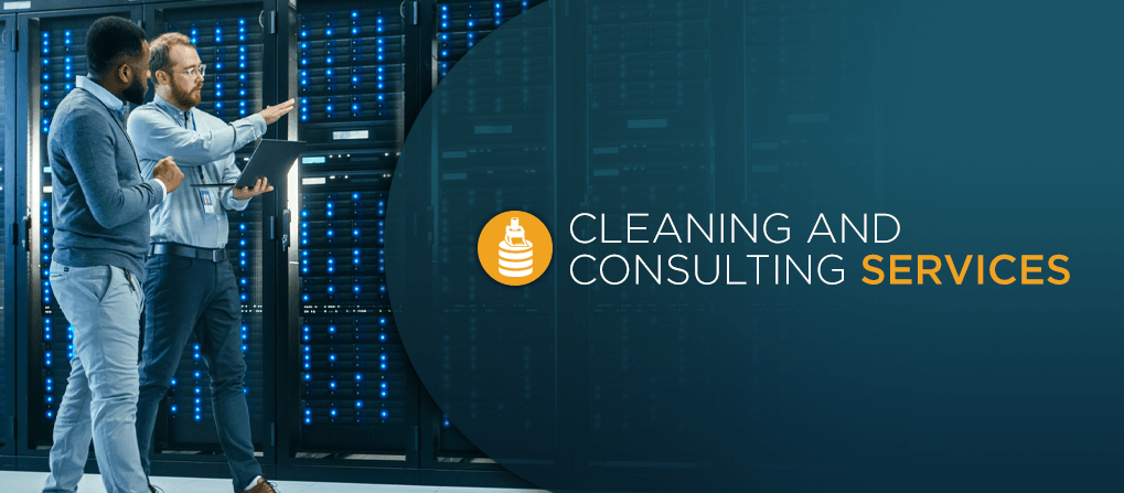 cleaning and consulting services